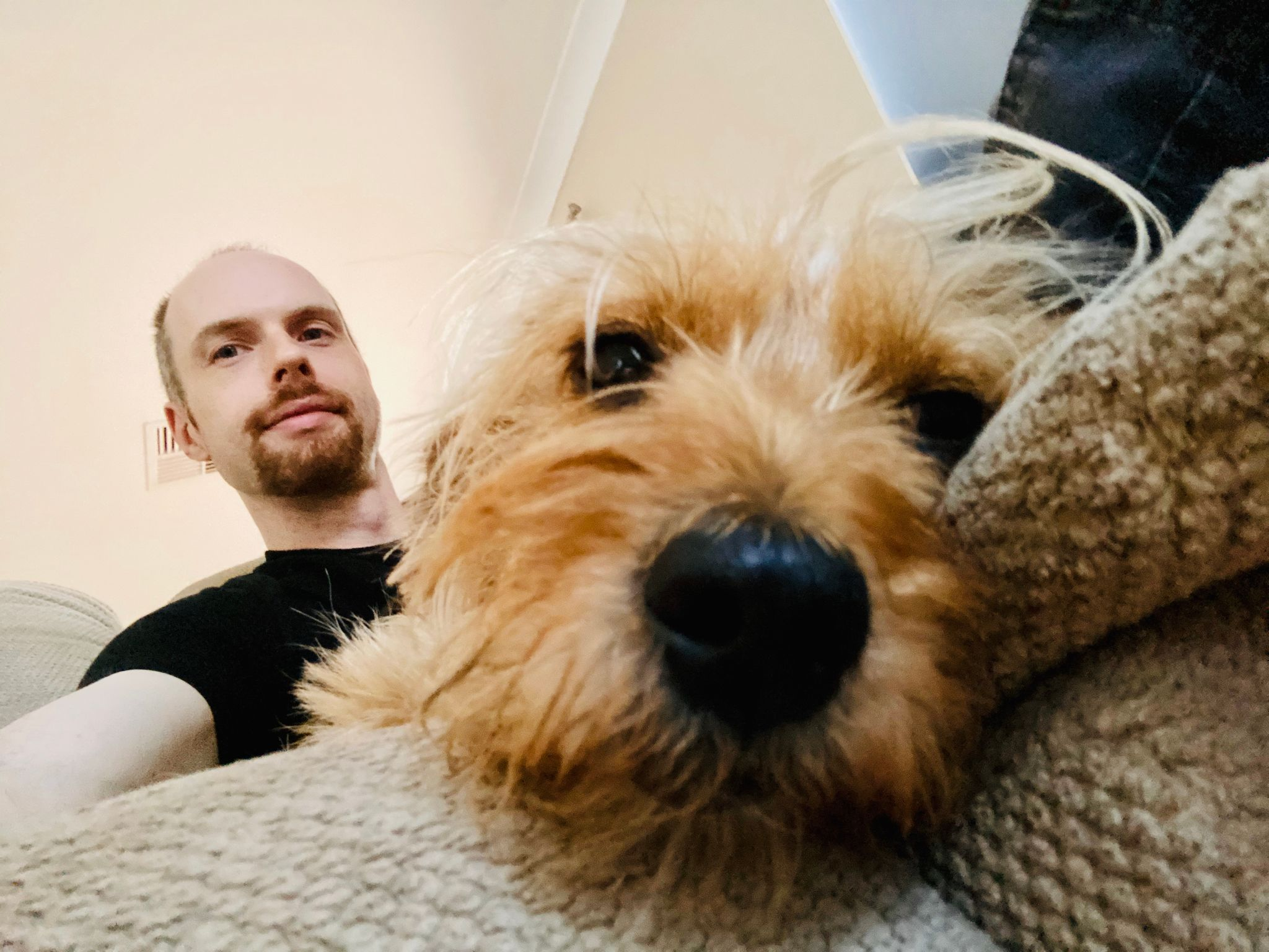 A photo taken with the front facing camera directly in front of the same dog, he's completely dishevelled and half asleep. A white man with a red goatee is visible behind the dog.