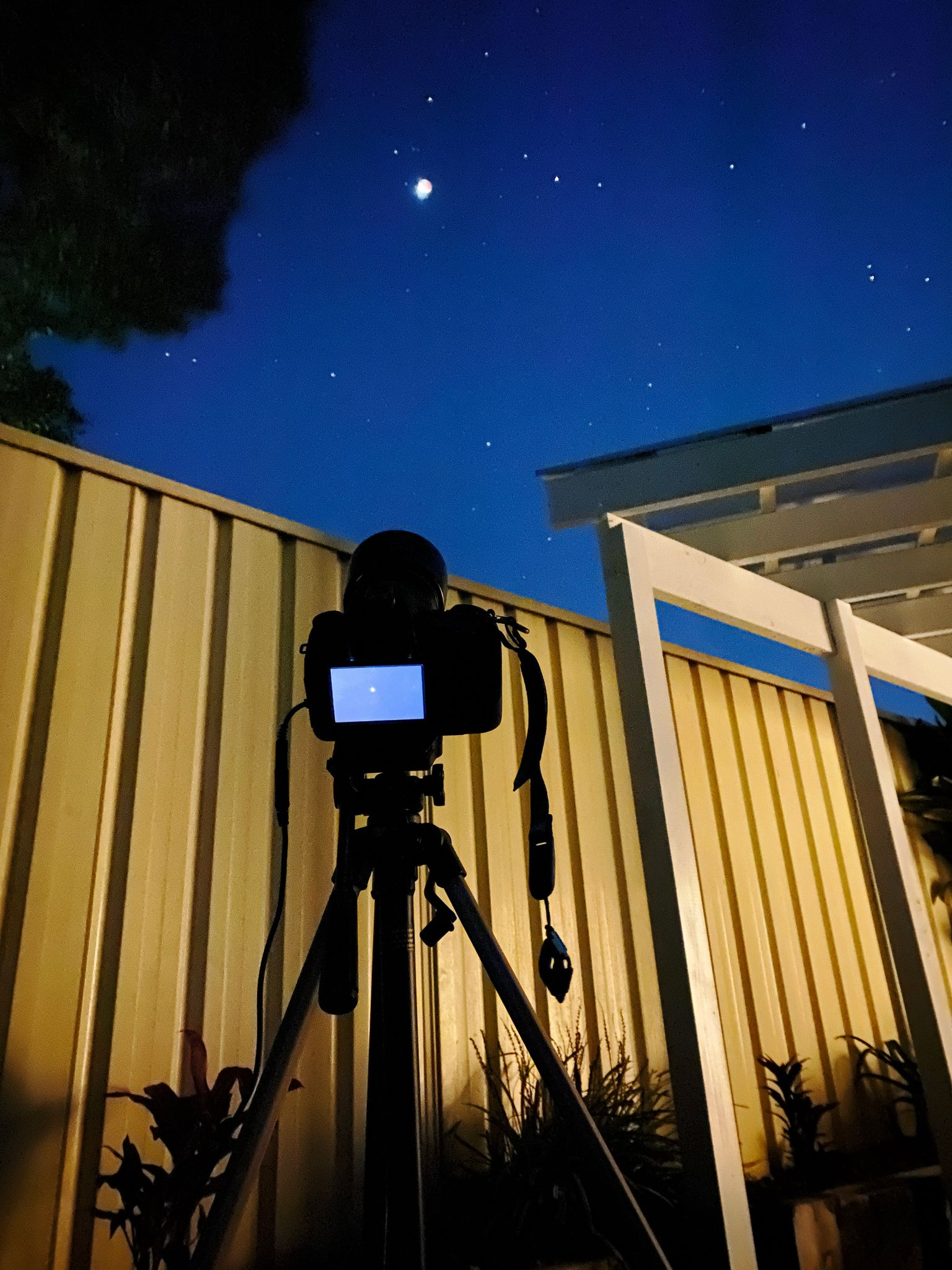 A photo of a DSLR on a tripod looking up at the moon.
