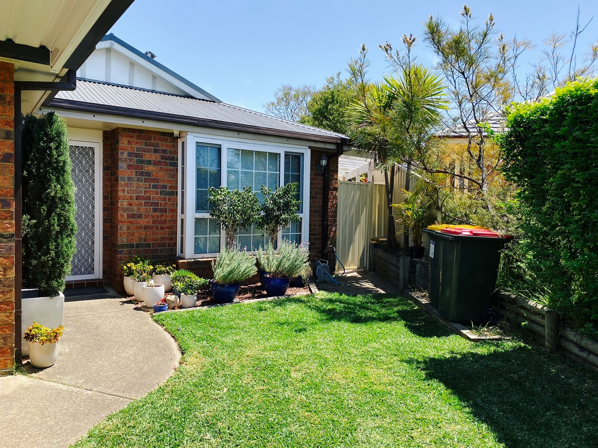 A photo of a section of front yard in front of our house. There's a bay window with a bunch of plants in pots in front of it in a little mulched garden area, and the grass in front of the garden is wonderfully neat and tidy.