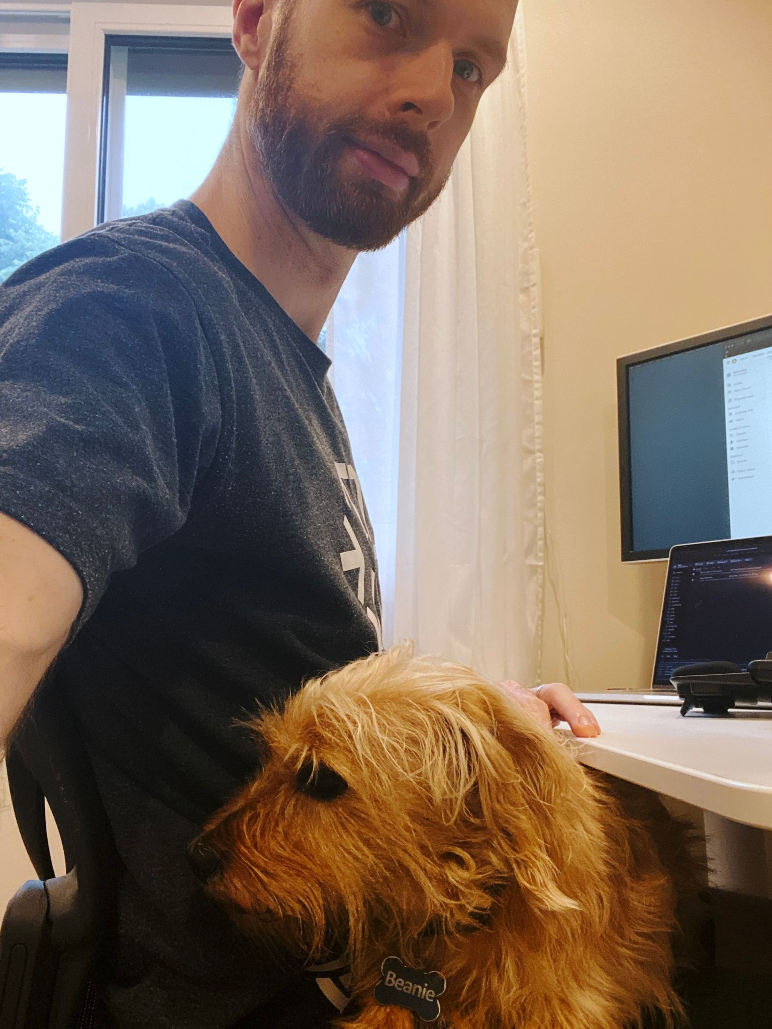 A selfie of me, a white man with short hair and a short beard, sitting at my desk, with a small scruffy blonde dog lying in my lap.