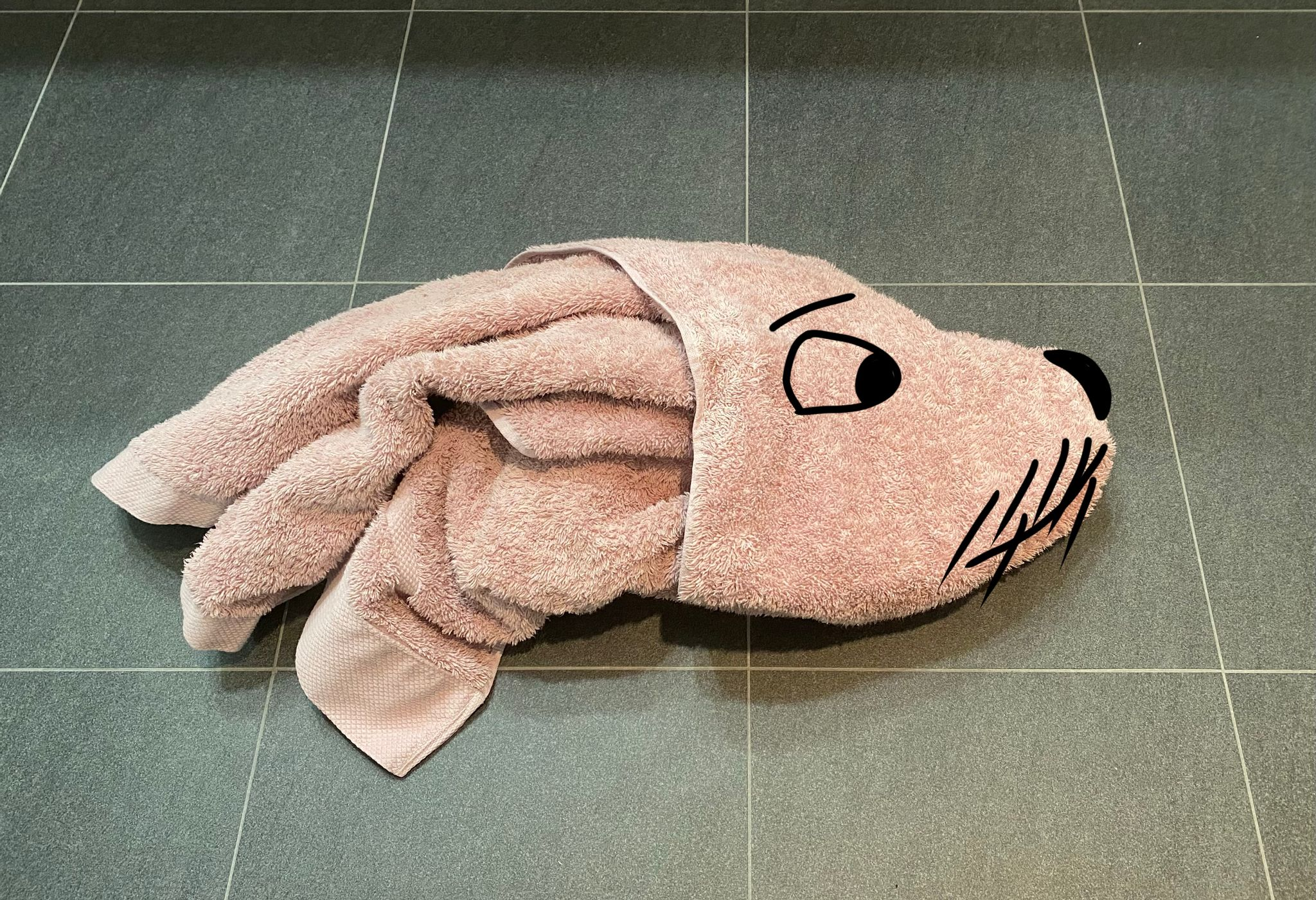 A photo of a pink towel crumpled up on the floor such that it looks like it's a profile of a dog's head. I've drawn eyes, a nose, whiskers, and a mouth on the photo so it looks even more like a dog.