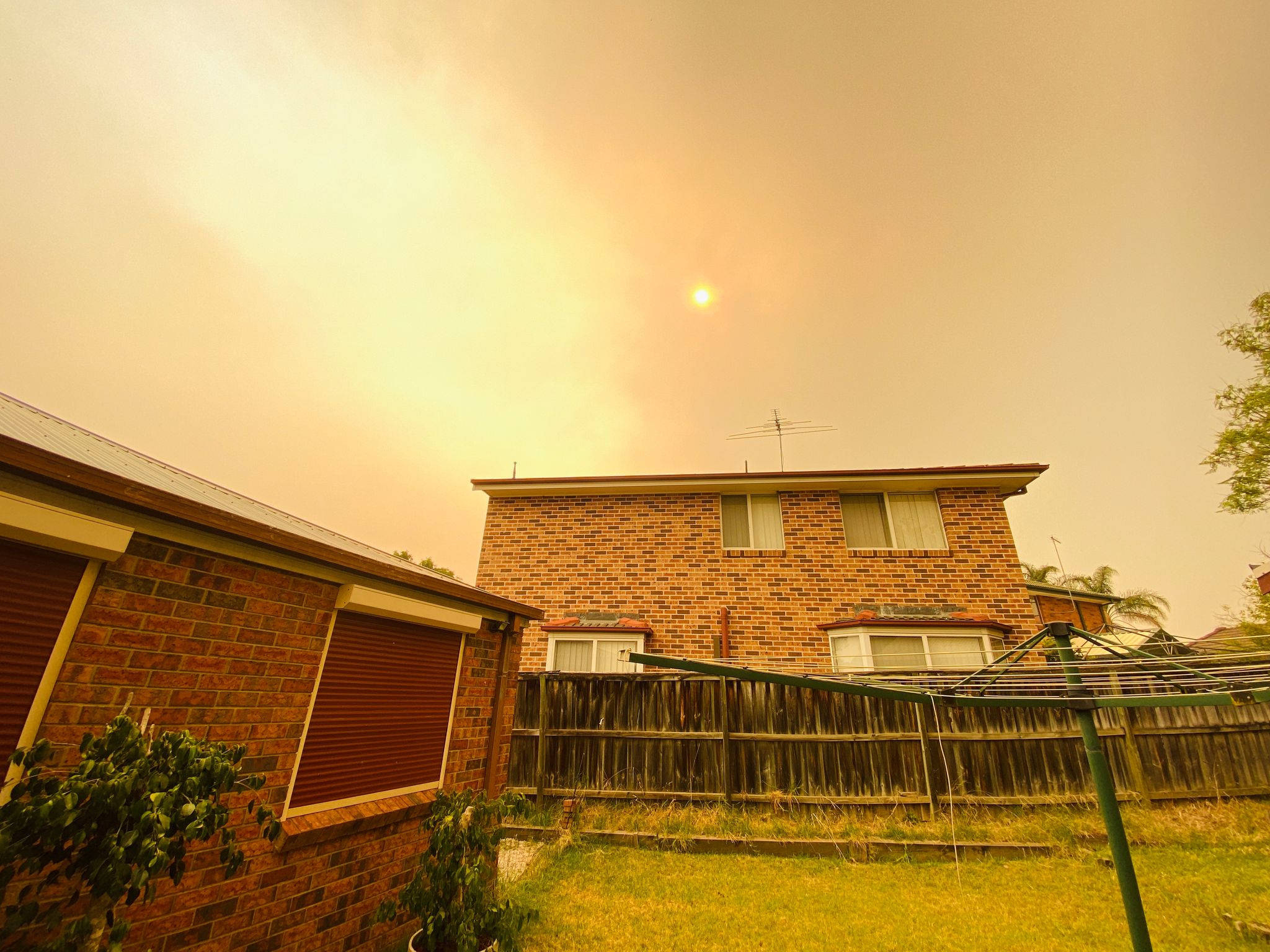 A wide angle photo of our backyard, the grass is very yellow and dying and a two-storey house is behind the back fence. The sky is covered by bushfire smoke and the sun is an orange orb. The whole scene has a very yellow tint.