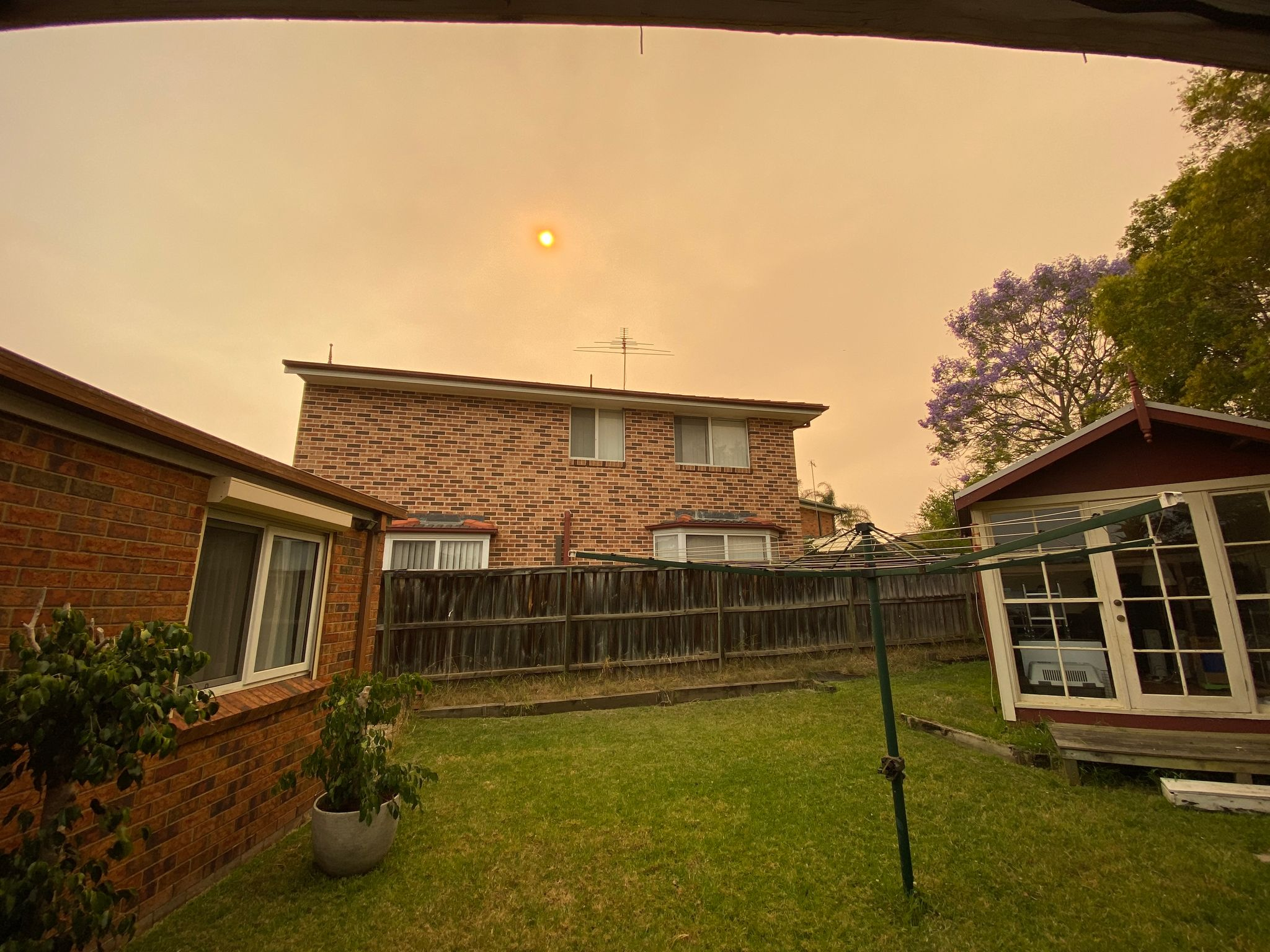 A photo of a suburban backyard, the sky is covered in smoke and the sun is noticeably more orange than usual. The light of the whole scene is much more yellow than normal.